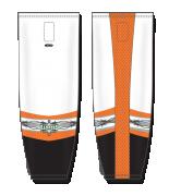 ZH702-DESIGN-HS1012_FEAT